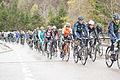 Tour de Romandie 2013 - étape4 - peloton.jpg