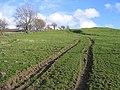 Track Junction at Pen-y-bryn Farm - geograph.org.uk - 354587.jpg