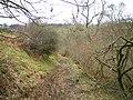 Track below Croniarth farm - geograph.org.uk - 1164089.jpg