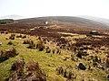 Track up Black Hill - geograph.org.uk - 1216605.jpg