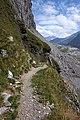 Trail on mountain hillside.jpg
