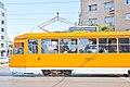 Trams in Sofia 2012 PD 079.jpg