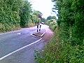 Tregurra Lane, Truro - geograph.org.uk - 2536444.jpg