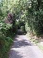 Troy Town Lane, Brook - geograph.org.uk - 1424468.jpg
