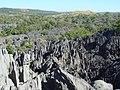Tsingy - 099.jpg