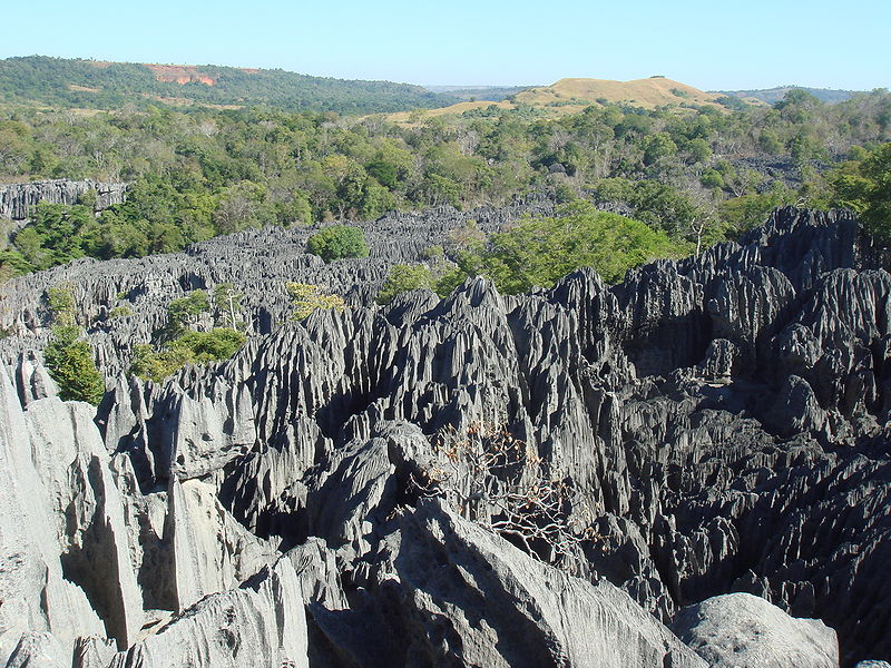 Tsingy de Bemaraha Strict Nature Reserve (and UNESCO World Heritage Site).  Image credit: Oliver Lejade (CC-BY-SA).
