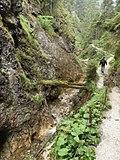 Turistický chodník v Juráňovej doline - panoramio.jpg