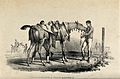 Two men grooming and getting a race horse ready on a race co Wellcome V0021774.jpg