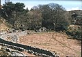 Ty'n-y-drwfwl - the ruins of an abandoned smallholding - geograph.org.uk - 302573.jpg
