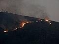 UG-LK Photowalk - 2018-03-24 - Wildfire near Kataboola (1).jpg