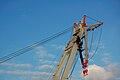 Uglen Bergen Norway Crane Detail 2009 1.JPG