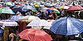 Umbrellas, Kalachakra 2014 (14515190180).jpg