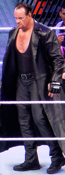 Undertaker 2015 WrestleMania.jpg