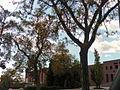 University of Utah campus 2007.jpg