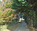 Ushikucho, Ushiku, Ibaraki Prefecture 300-1221, Japan - panoramio (3).jpg