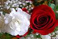 V-day flowers.jpg
