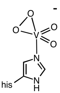 Vanadium bromoperoxidase