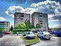 Veliky Novgorod, Novgorod Oblast, Russia - panoramio (314).jpg