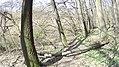 Verőce, 2621 Hungary - panoramio (91).jpg
