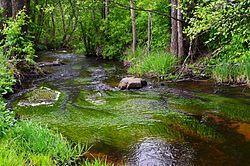 Veržuvos upelis.JPG