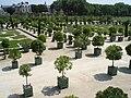 Versailles Orangerie, 17 July 2005 001.jpg