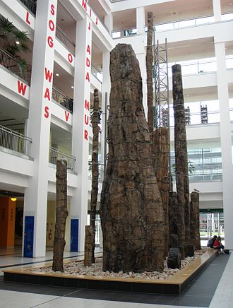 Chemnitz petrified forest - Petrified wood from the Chemnitz occurrence on display in the courtyard of DASTietz and Museum of Natural History Chemnitz