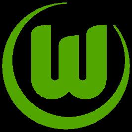 Vfl Wolf Blog