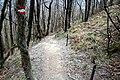 Via degli Dei, Firenzuola, discesa dal monte Gazzaro 01.jpg