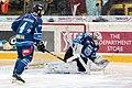 Vienna Capitals vs Fehervar AV19 -98.jpg