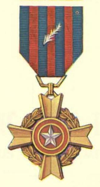 Hazardous Service Medal - Hazardous Service Medal