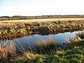 View SE across marshland towards the A55 - geograph.org.uk - 1087415.jpg