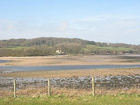 View across the outer estuary to the Llysdulas Estate - geograph.org.uk - 754269.jpg
