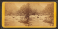 View of Broad River, Hickory Nut Gap, from Robert N. Dennis collection of stereoscopic views.png