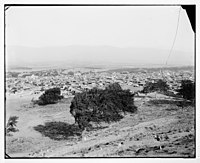 View of a town in Syria? LOC matpc.07216.jpg