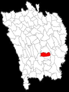 Viișoara, Vaslui Commune in Vaslui, Romania
