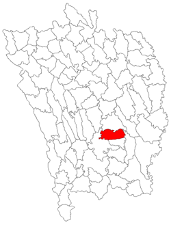 Location of Viișoara