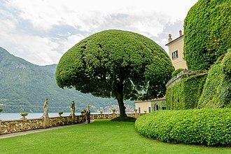 Villa del Balbianello - Image: Villa Balbianello 3687