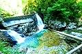 Vintgar Gorge (35423100860).jpg