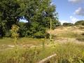 Vlakte van Waalsdorp (Waalsdorpervlakte) 2016-08-10 img. 410.png