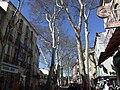 Vue de la section Ouest du Boulevard Maréchal Joffre.jpg