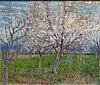 WLANL - artanonymous - De roze boomgaard.jpg