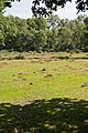 Warwickslade Cutting, a planned meander - geograph.org.uk - 1464547.jpg