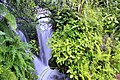 Waterfalls in Budhi-Uttarakhand.jpg