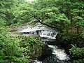 Waterfalls on the Afon Nedd Fechan - geograph.org.uk - 6482025.jpg