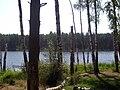 Wepachihinskoe lake.jpg