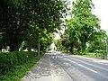 West Green - geograph.org.uk - 1417303.jpg