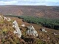 West Kielder Moor - geograph.org.uk - 1546416.jpg