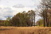 Wijnjeterper Schar, Natura 2000-gebied provincie Friesland 19.jpg