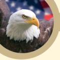 Wiki Eagle Public Domain.png