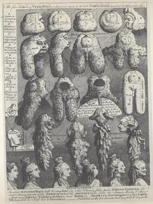 The Five Orders of Perriwigs , incisione del 1761 da parte di William Hogarth che parla in modo sarcastico e scherzoso delle parrucche del '700